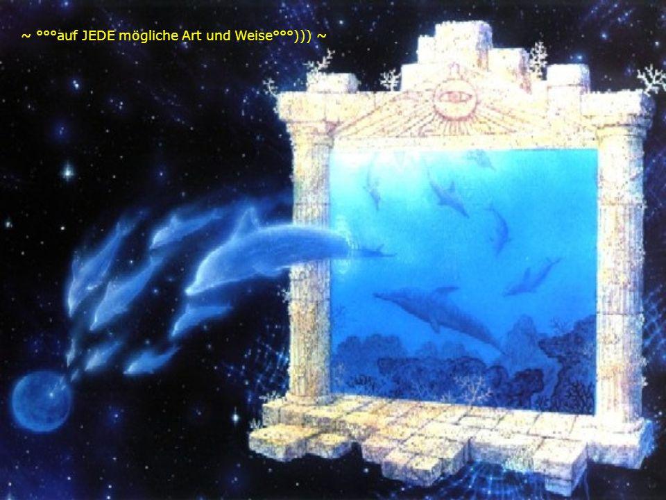 ~ °°°ALLLES wirkt in Harmonie zusammen ~ in ALLLEN Ebenen !!! ~