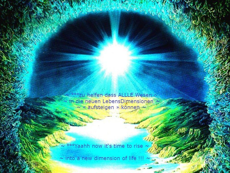 ~ °°°JEDES Wesen hat seinen speziellen Platz ~ ~ so wie auch unsere « Engel ohne Flügel » !!.