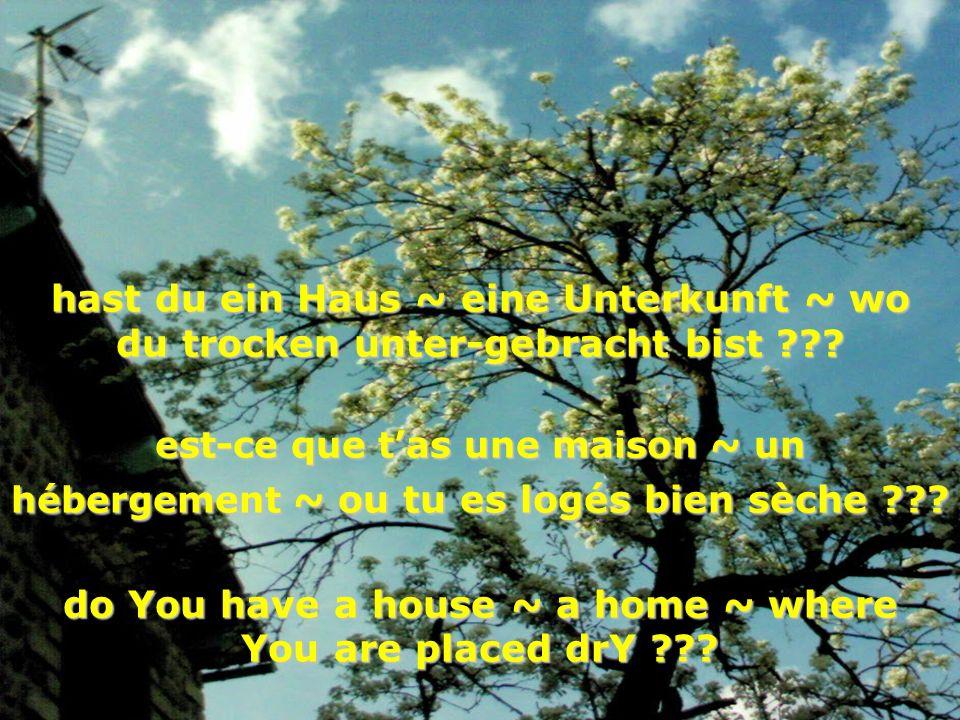 hast du ein Haus ~ eine Unterkunft ~ wo du trocken unter-gebracht bist ??? est-ce que tas une maison ~ un hébergement ~ ou tu es logés bien sèche ???