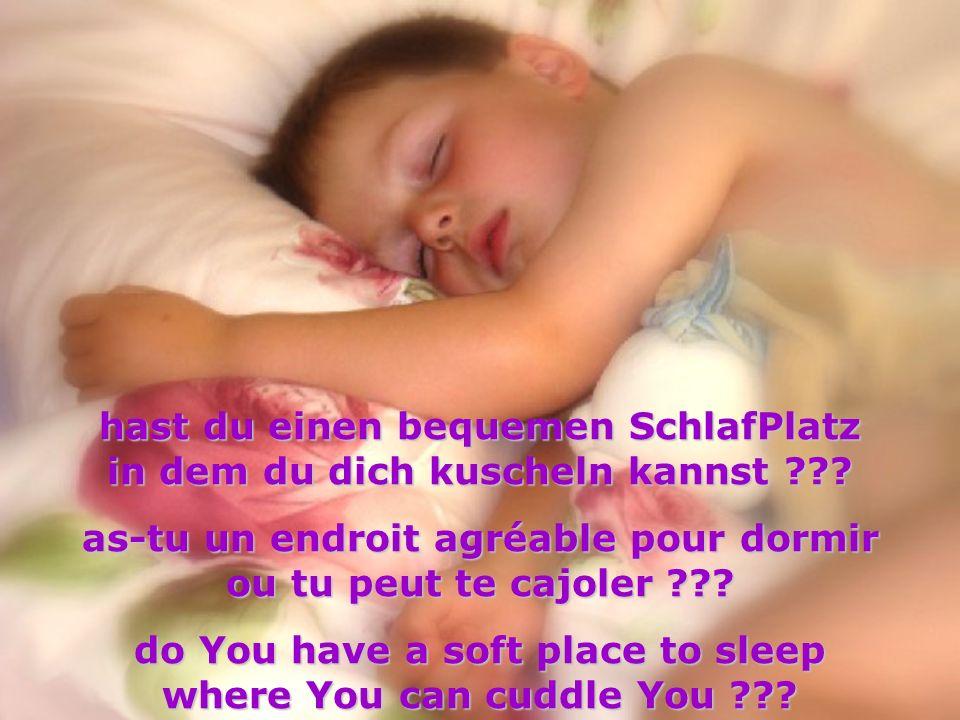 hast du einen bequemen SchlafPlatz in dem du dich kuscheln kannst ??? as-tu un endroit agréable pour dormir ou tu peut te cajoler ??? do You have a so