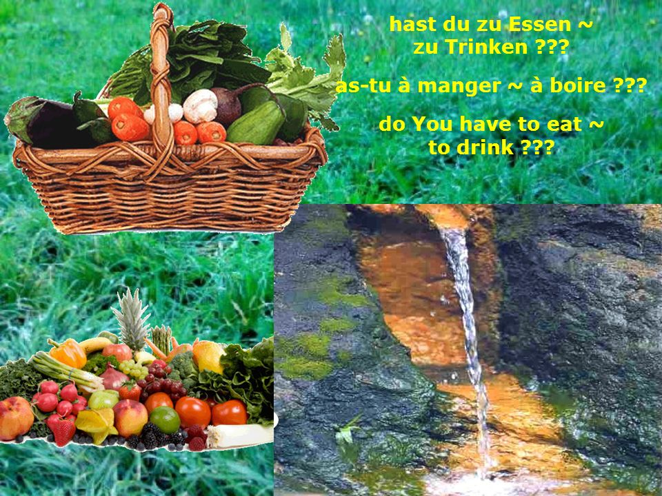 hast du zu Essen ~ zu Trinken as-tu à manger ~ à boire do You have to eat ~ to drink