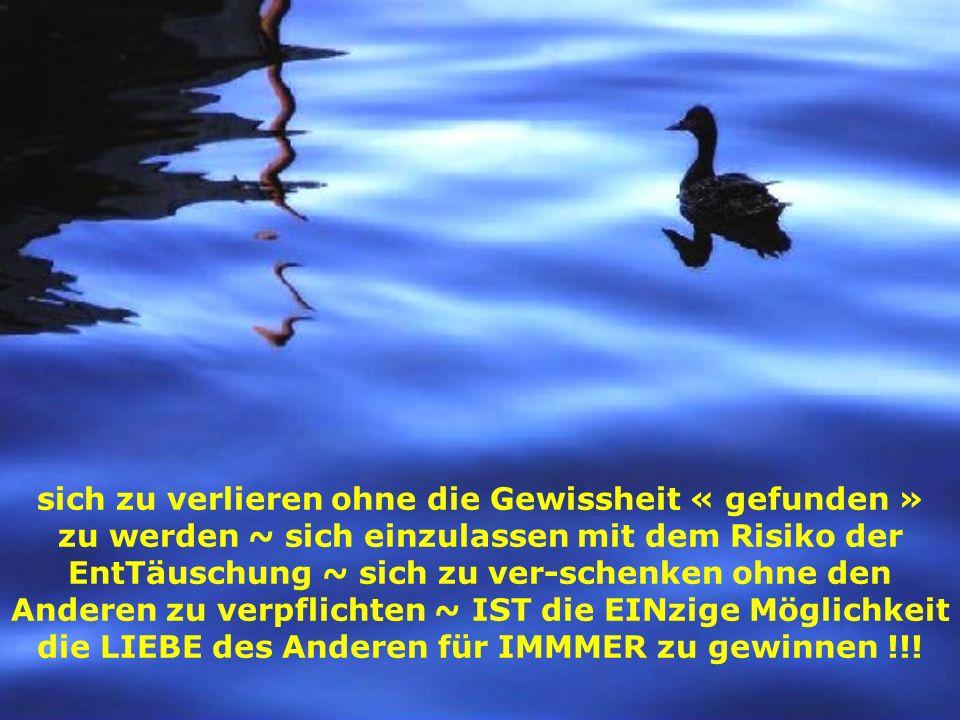 Vertrauen ist aus der LIEBE im HERZen geboren ~ und aus REINer LIEBE IST es UNerschütterlich !!!