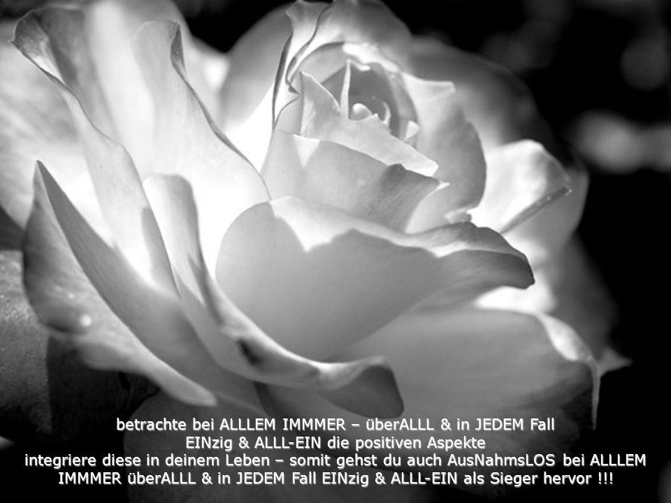 ziehe in Betracht dass großer Erfolg auch große Risiken in sich birgt°°° WAHRE BedingungsLOSe Liebe hingegen ist ein Segen für ALLLE und ALLLES !!!