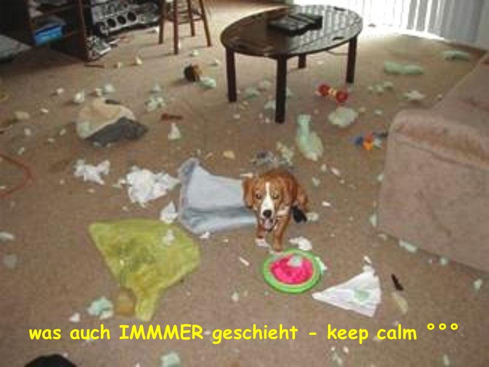 was auch IMMMER geschieht - keep calm °°°