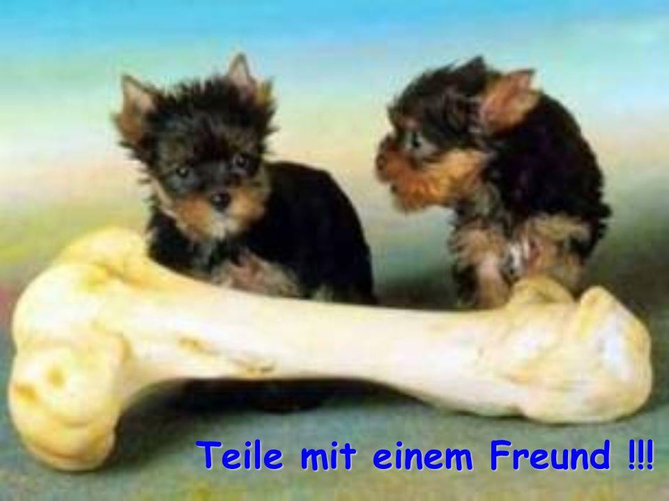 Teile mit einem Freund !!!