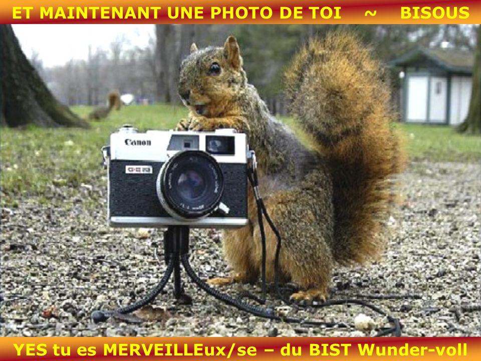 ET MAINTENANT UNE PHOTO DE TOI ~ BISOUS YES tu es MERVEILLEux/se – du BIST Wunder-voll