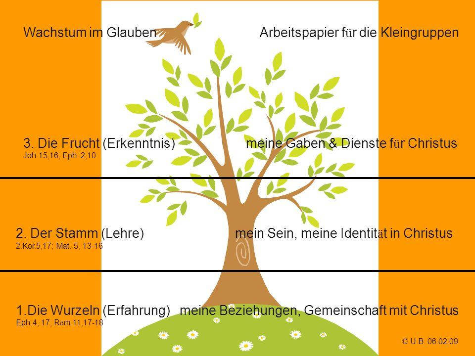 Wachstum im Glauben Arbeitspapier f ü r die Kleingruppen 3. Die Frucht (Erkenntnis) meine Gaben & Dienste f ü r Christus Joh.15,16; Eph. 2,10 2. Der S
