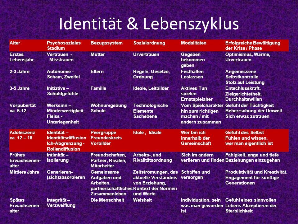 Identität & Lebenszyklus AlterPsychosoziales Stadium BezugssystemSozialordnungModalitätenErfolgreiche Bewältigung der Krise / Phase Erstes Lebensjahr
