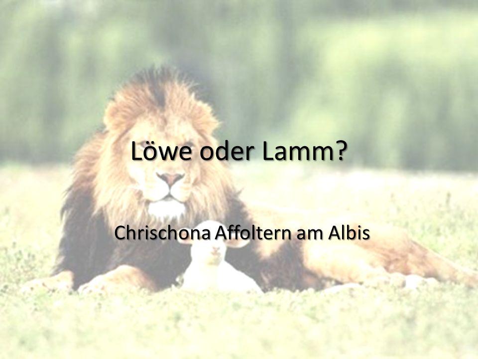Löwe oder Lamm? Chrischona Affoltern am Albis