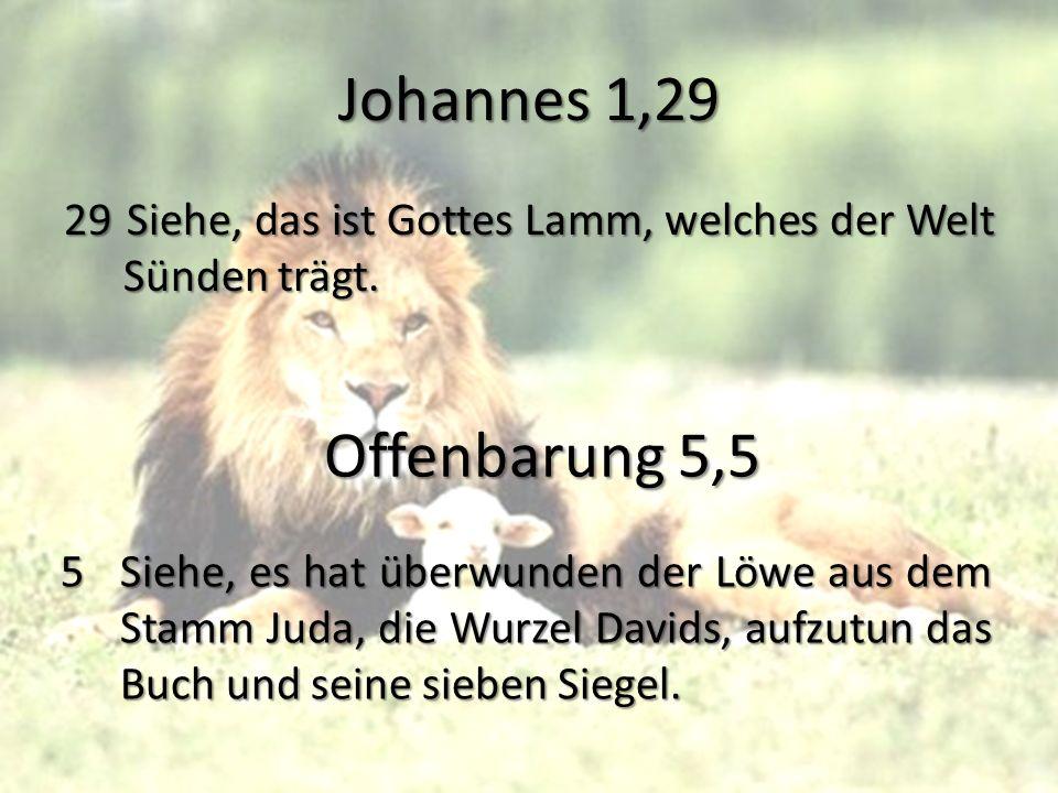 Johannes 1,29 29Siehe, das ist Gottes Lamm, welches der Welt Sünden trägt. Offenbarung 5,5 5Siehe, es hat überwunden der Löwe aus dem Stamm Juda, die