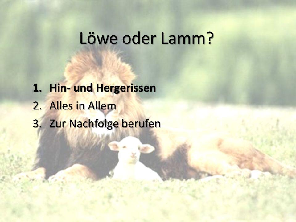 Löwe oder Lamm? 1.Hin- und Hergerissen 2.Alles in Allem 3.Zur Nachfolge berufen