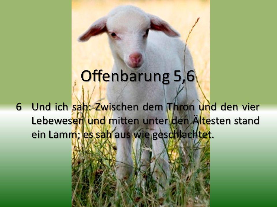 Offenbarung 5,6 6Und ich sah: Zwischen dem Thron und den vier Lebewesen und mitten unter den Ältesten stand ein Lamm; es sah aus wie geschlachtet.