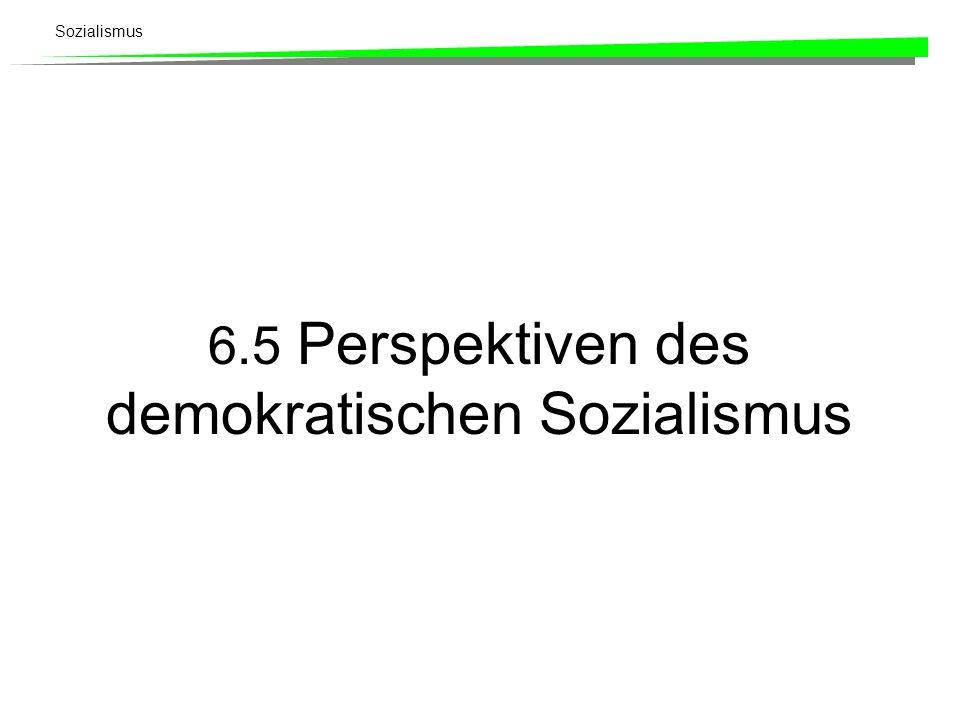 Sozialismus 6.5 Perspektiven des demokratischen Sozialismus