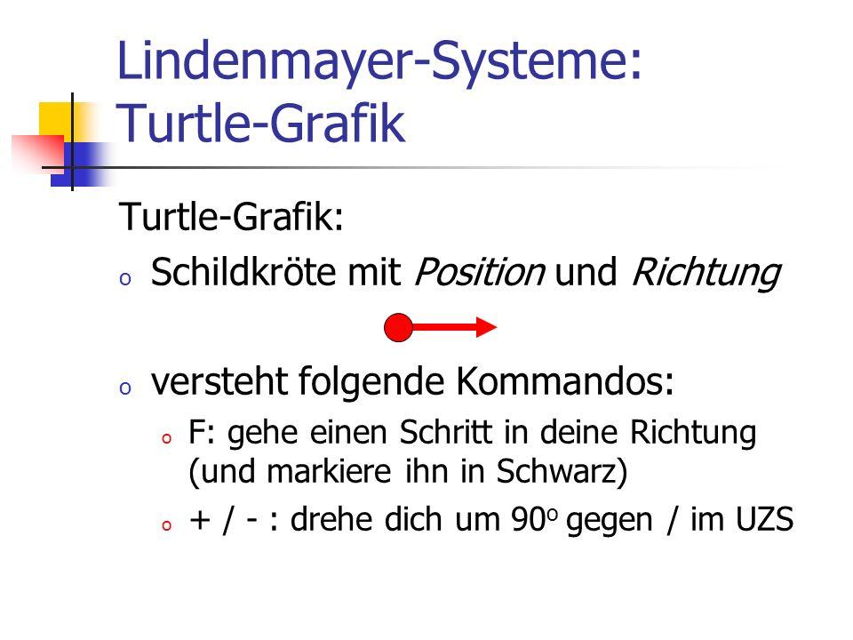 Lindenmayer-Systeme: Turtle-Grafik Turtle-Grafik: o Schildkröte mit Position und Richtung o versteht folgende Kommandos: o F: gehe einen Schritt in de