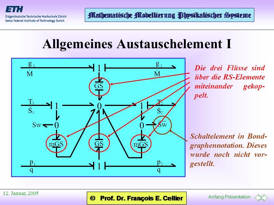 Anfang Präsentation 12. Januar, 2005 Allgemeines Austauschelement I p q 1 GS 0 1 p q 2 1 11 0 mGS 0 T S. 1 T S. 2 12 g M. 1 g M. 2 Sw Die drei Flüsse