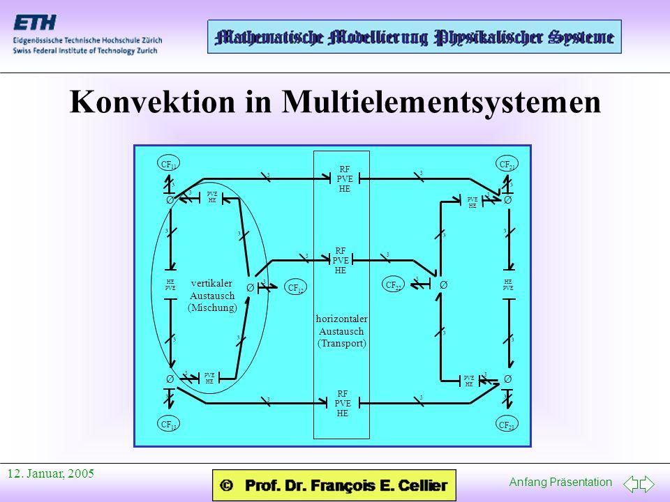 Anfang Präsentation 12. Januar, 2005 Konvektion in Multielementsystemen