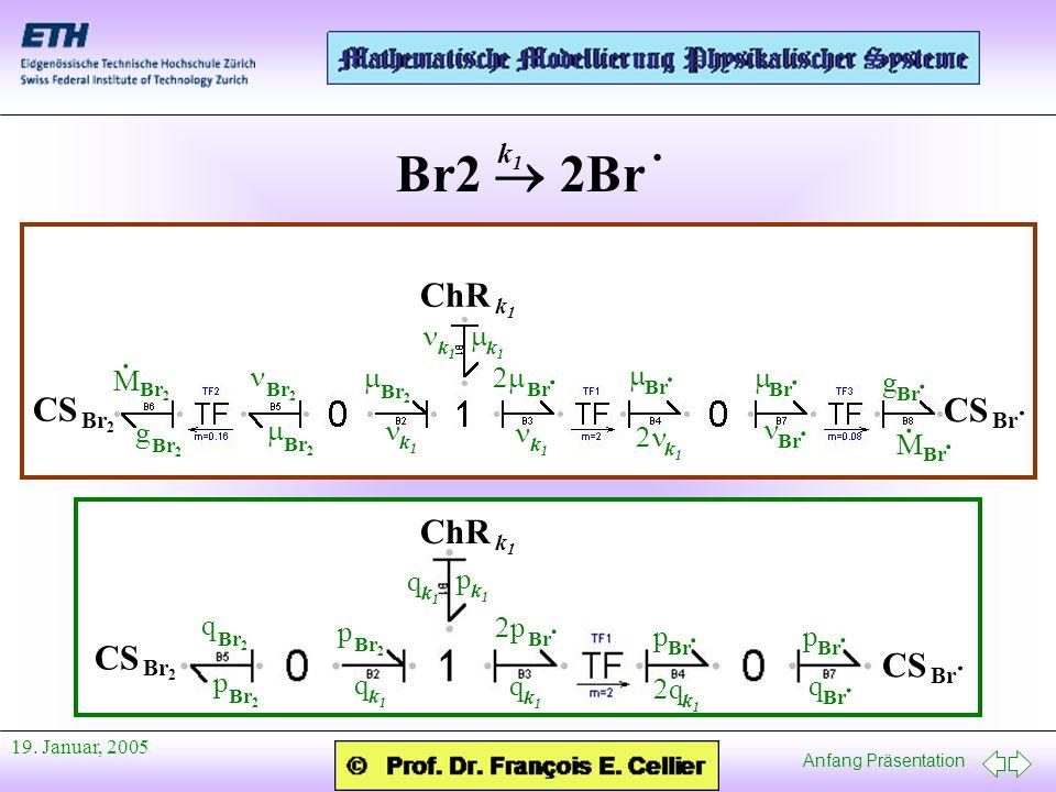 Anfang Präsentation 19. Januar, 2005 Br2 2Br · k1k1 CS Br 2 CS Br · ChR k1k1 g Br 2 M · M Br · · g · Br 2 Br · Br · Br 2 Br · Br 2 k1k1 k1k1 Br · k1k1