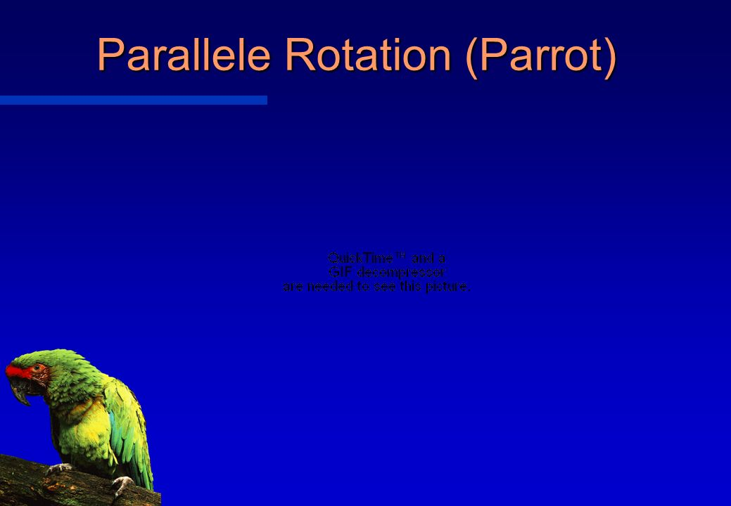 Parallele Rotation (Parrot)