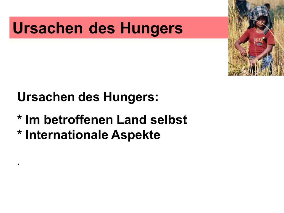 Ursachen des Hungers Ursachen des Hungers: * Im betroffenen Land selbst * Internationale Aspekte.