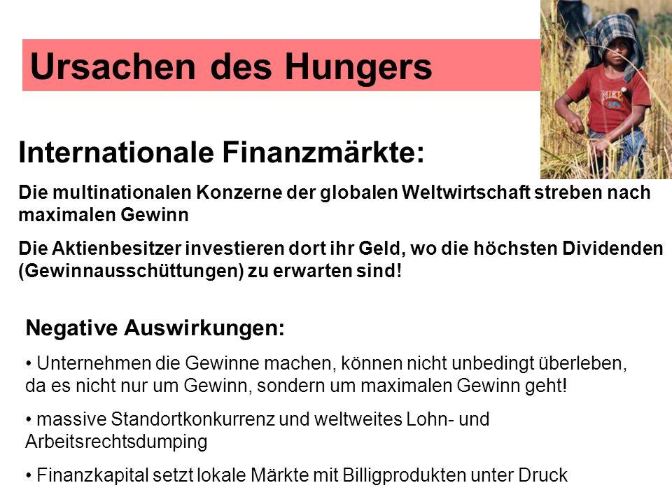 Ursachen des Hungers Internationale Finanzmärkte: Die multinationalen Konzerne der globalen Weltwirtschaft streben nach maximalen Gewinn Die Aktienbes