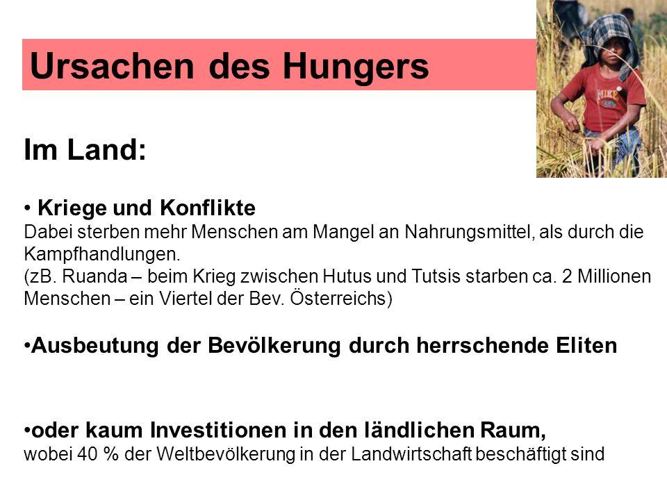 Ursachen des Hungers Im Land: Kriege und Konflikte Dabei sterben mehr Menschen am Mangel an Nahrungsmittel, als durch die Kampfhandlungen. (zB. Ruanda