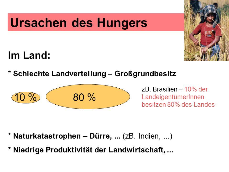 Ursachen des Hungers Im Land: * Schlechte Landverteilung – Großgrundbesitz 10 %80 % * Naturkatastrophen – Dürre,... (zB. Indien,...) * Niedrige Produk