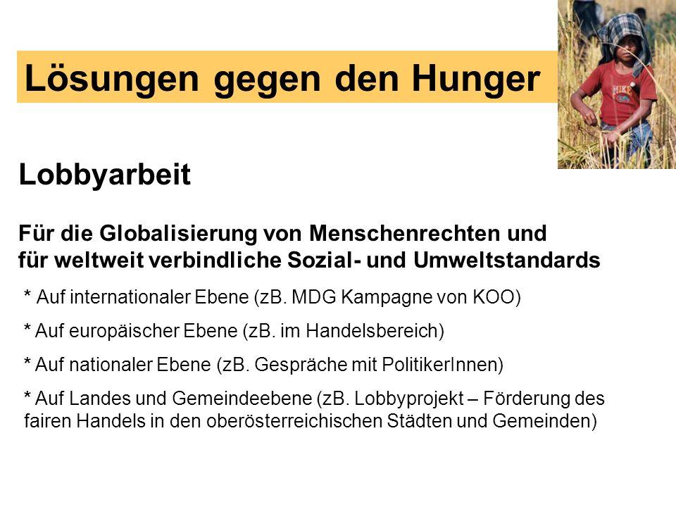 Lösungen gegen den Hunger Lobbyarbeit Für die Globalisierung von Menschenrechten und für weltweit verbindliche Sozial- und Umweltstandards * Auf inter