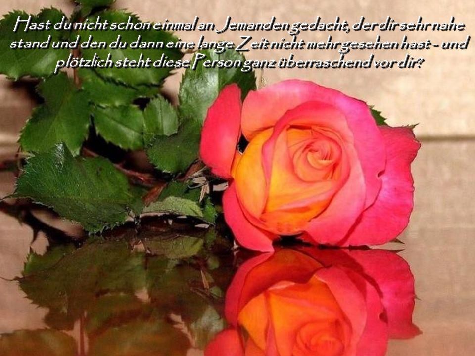 Das ist göttliche Fügung! Er kennt dein mitfühlendes Herz.