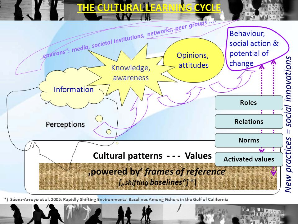 Cultural patterns - - - Values powered by frames of reference [ shifting baselines] *) Perceptions Information Opinions, attitudes Behaviour, social a