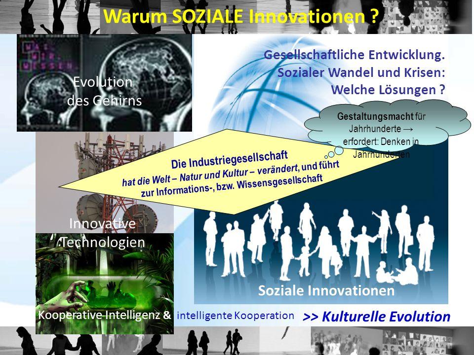 Prof.Dr. Josef Hochgerner Zentrum für Soziale Innovation Linke Wienzeile 246 A - 1150 Wien Tel.