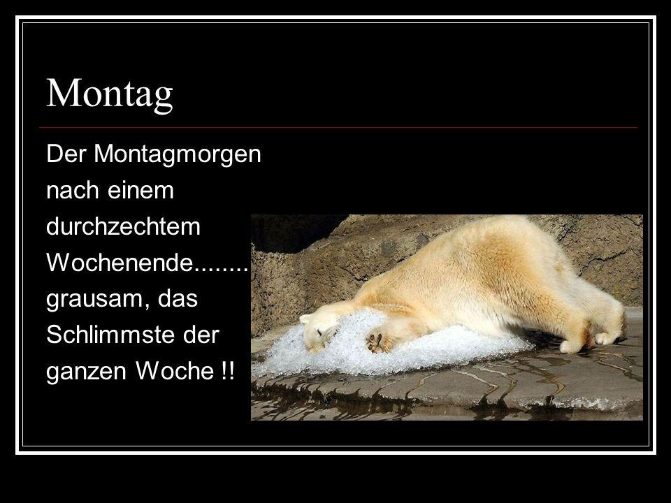 Montag Der Montagmorgen nach einem durchzechtem Wochenende........... grausam, das Schlimmste der ganzen Woche !!