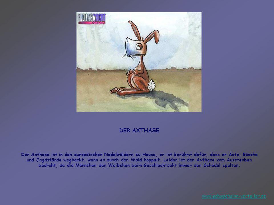 Helfen Helfen wir ALLE den in Europa lebenden zehr zeltenen Tiere!!! www.schwachsinn-verteiler.de
