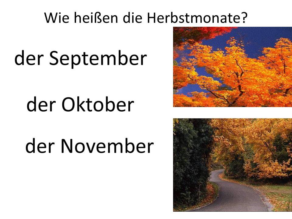 Der erste Monat des Jahres heißt … Der zweite Monat des Jahres heißt Der dritte Monat des Jahres heißt … Der vierte Monat des Jahres heißt … Der fünfte Monat des Jahres heißt … Der sechste Monat des Jahres heißt … Der siebte Monat des Jahres heißt … Der achte Monat des Jahres heißt … Der neunte Monat des Jahres heißt … Der zehnte Monat des Jahres heißt … Der elfte Monat des Jahres heißt … Der zwölfte Monat des Jahres heißt …