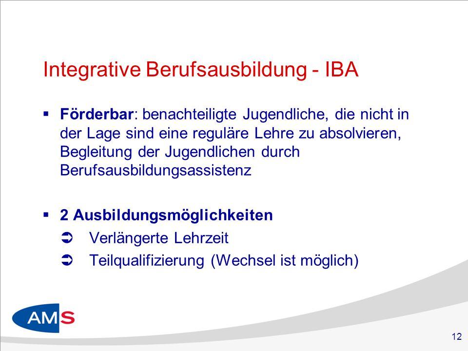 12 Integrative Berufsausbildung - IBA Förderbar: benachteiligte Jugendliche, die nicht in der Lage sind eine reguläre Lehre zu absolvieren, Begleitung der Jugendlichen durch Berufsausbildungsassistenz 2 Ausbildungsmöglichkeiten Verlängerte Lehrzeit Teilqualifizierung (Wechsel ist möglich)