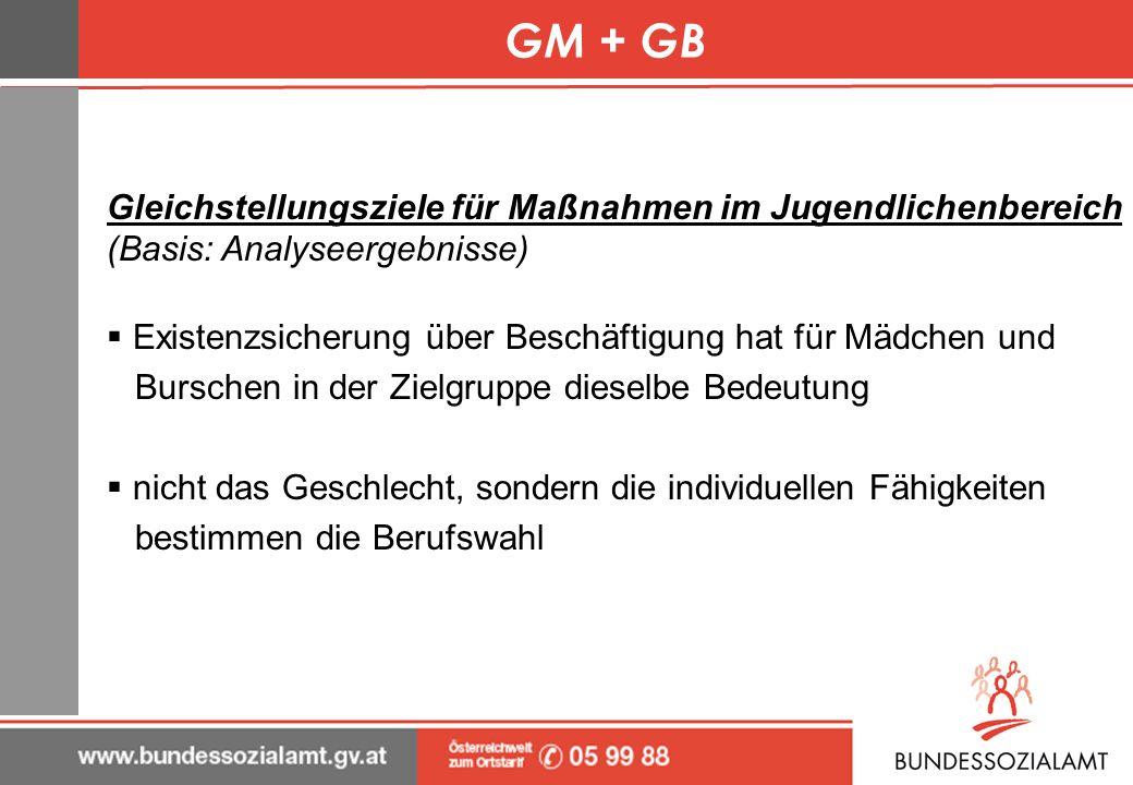 GM + GB Gleichstellungsziele für Maßnahmen im Jugendlichenbereich (Basis: Analyseergebnisse) Existenzsicherung über Beschäftigung hat für Mädchen und