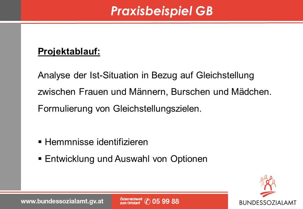 Praxisbeispiel GB Projektablauf: Analyse der Ist-Situation in Bezug auf Gleichstellung zwischen Frauen und Männern, Burschen und Mädchen. Formulierung