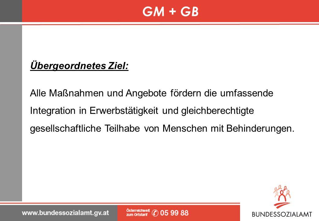 GM + GB Übergeordnetes Ziel: Alle Maßnahmen und Angebote fördern die umfassende Integration in Erwerbstätigkeit und gleichberechtigte gesellschaftlich
