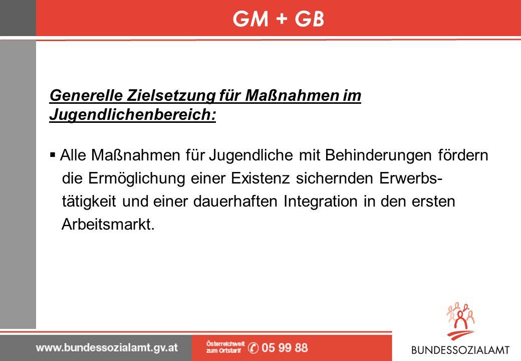 GM + GB Generelle Zielsetzung für Maßnahmen im Jugendlichenbereich: Alle Maßnahmen für Jugendliche mit Behinderungen fördern die Ermöglichung einer Ex