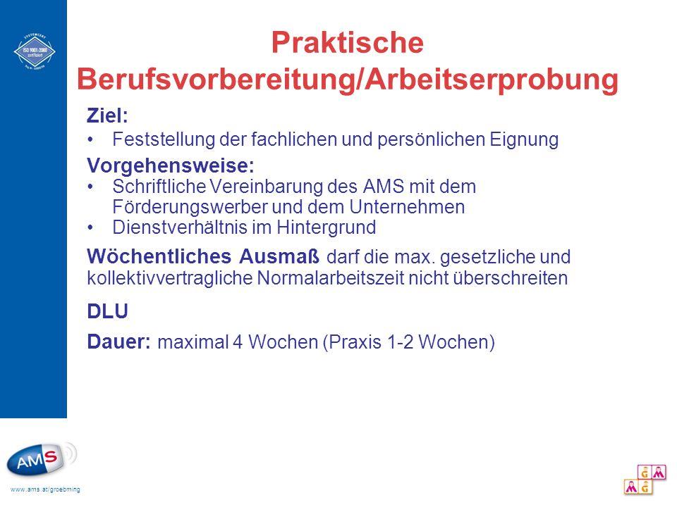 www.ams.at/groebming Praktische Berufsvorbereitung/Arbeitserprobung Ziel: Feststellung der fachlichen und persönlichen Eignung Vorgehensweise: Schrift