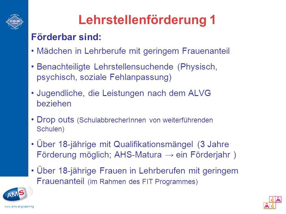 www.ams.at/groebming Lehrstellenförderung 1 Förderbar sind: Mädchen in Lehrberufe mit geringem Frauenanteil Benachteiligte Lehrstellensuchende (Physis