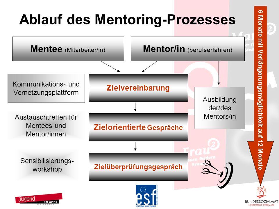 6 Monate mit Verlängerungsmöglichkeit auf 12 Monate Mentor/in (berufserfahren) Zielorientierte Gespräche Mentee (Mitarbeiter/in) Kommunikations- und V