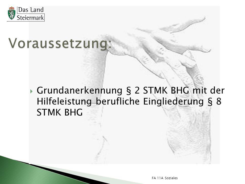 FA 11A Soziales Grundanerkennung § 2 STMK BHG mit der Hilfeleistung berufliche Eingliederung § 8 STMK BHG
