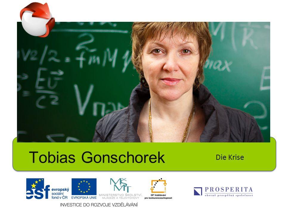 Tobias Gonschorek Die Krise