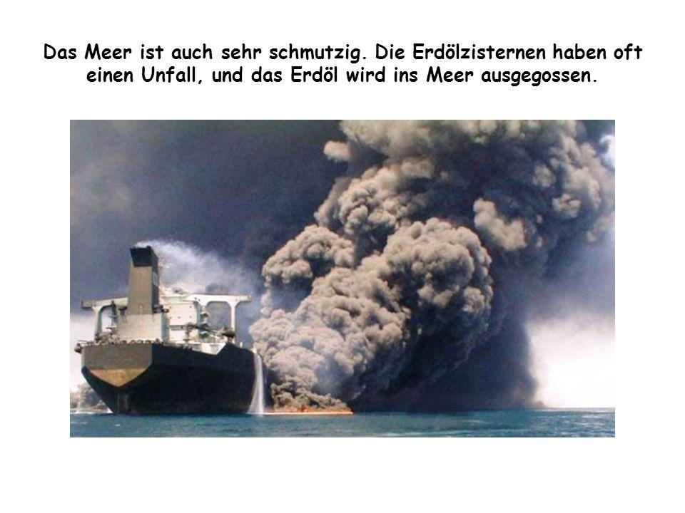 Das Meer ist auch sehr schmutzig. Die Erdölzisternen haben oft einen Unfall, und das Erdöl wird ins Meer ausgegossen.