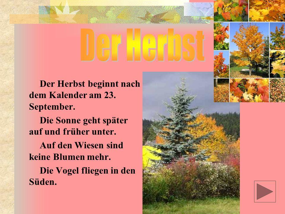 Der Herbst beginnt nach dem Kalender am 23.September.