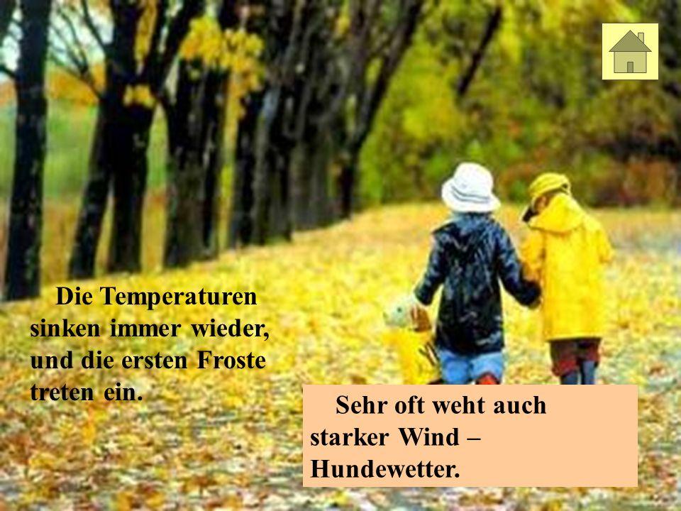 Viele Leute mögen den Herbst wegen seiner bunten Farben.