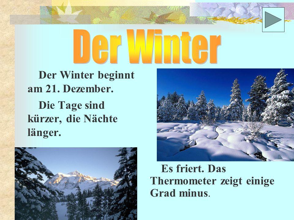 Der Winter beginnt am 21.Dezember. Die Tage sind kürzer, die Nächte länger.