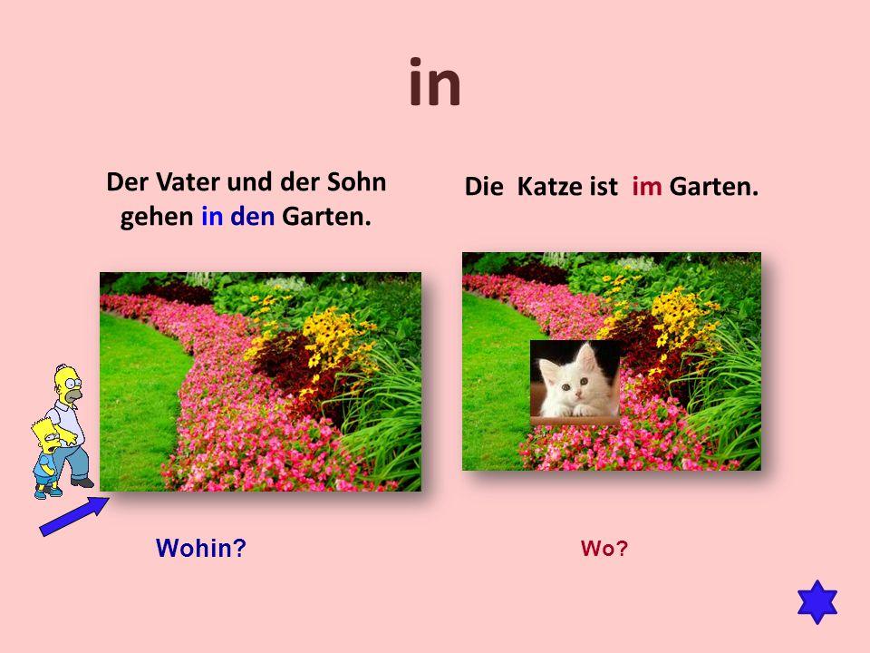 in Der Vater und der Sohn gehen in den Garten. Die Katze ist im Garten. Wohin? Wo?