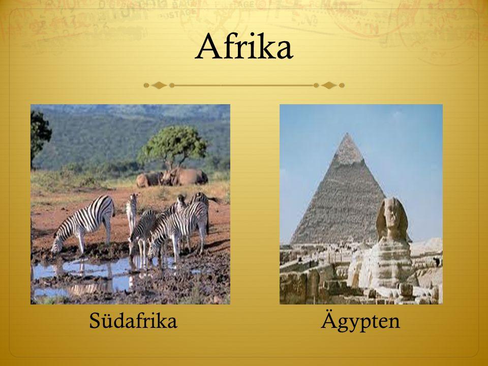 Afrika SüdafrikaÄgypten