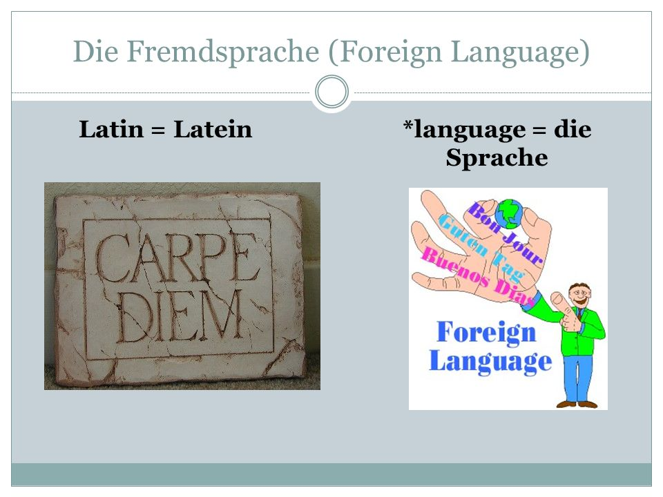Die Fremdsprache (Foreign Language) Latin = Latein*language = die Sprache